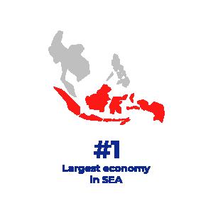 largest economy graphic